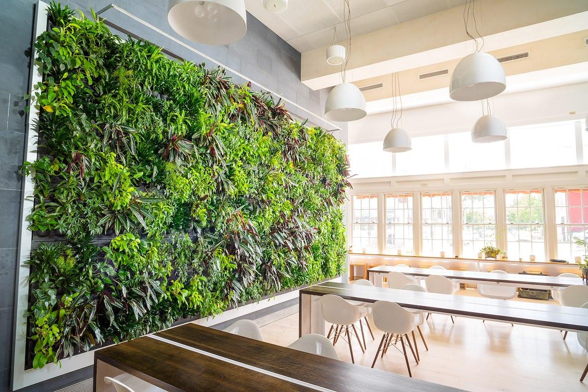LivePanel Pflanzenwand