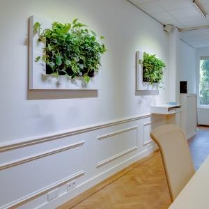 Mobilane LivePicture 1 72x72x7 cm ohne Pflanzen
